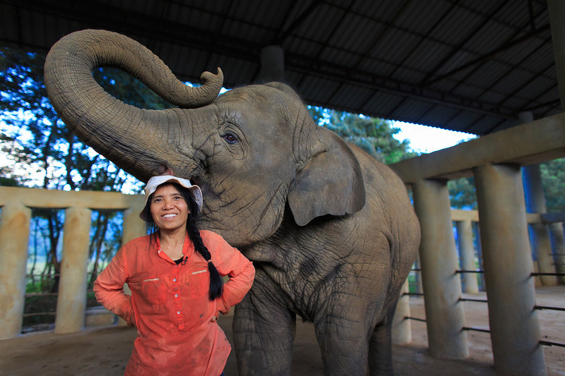 Lek Chailert often sings Thai lullabies to  her elephants to help them fall asleep after a long day at the Elephant Nature Park.   Canon 5D Mark III, Canon 24mm,  1/1000 sec, f/2