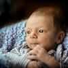 Eli H Newborn 2014 68_edited-1