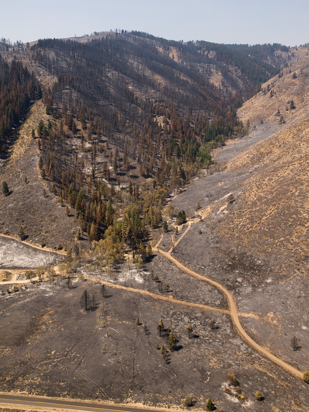 Elk Burned Area Aerial Photos