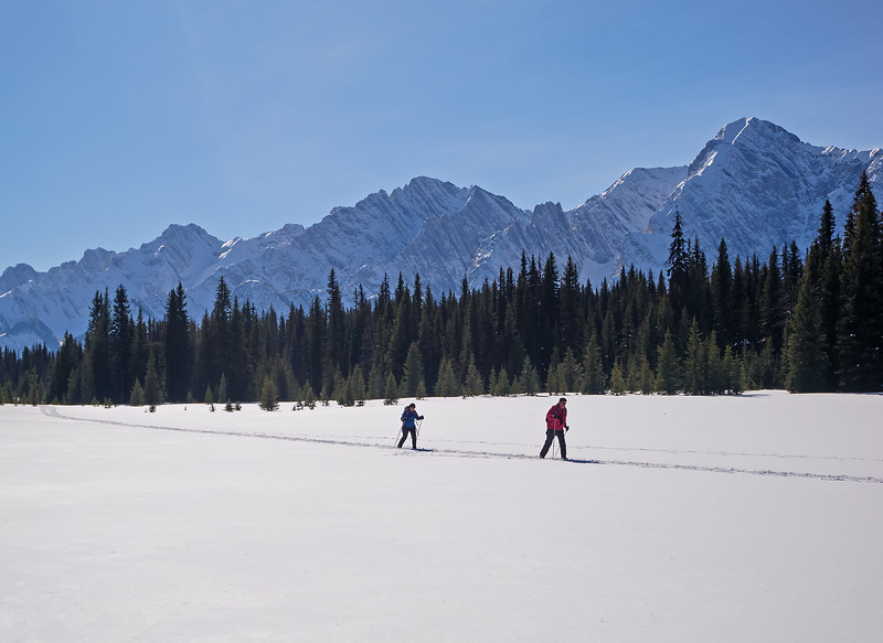 The earlier skiers whose track I followed for a ways, heading back north.