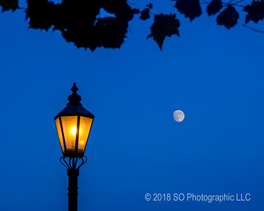 The Moon & the Lamppost