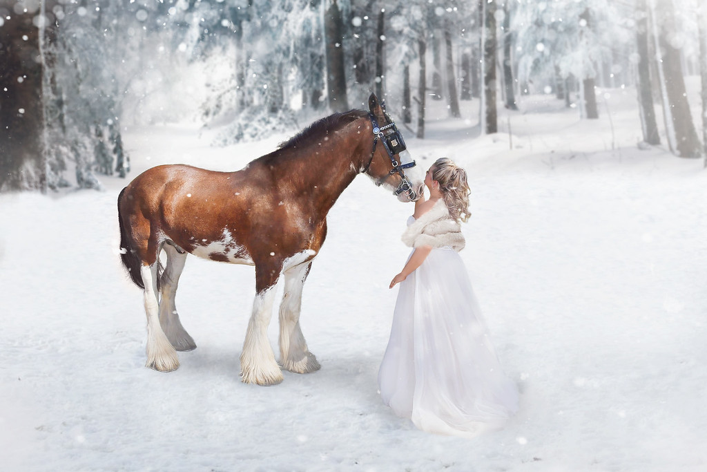 Jessie D Images - Winter Bride - Elle