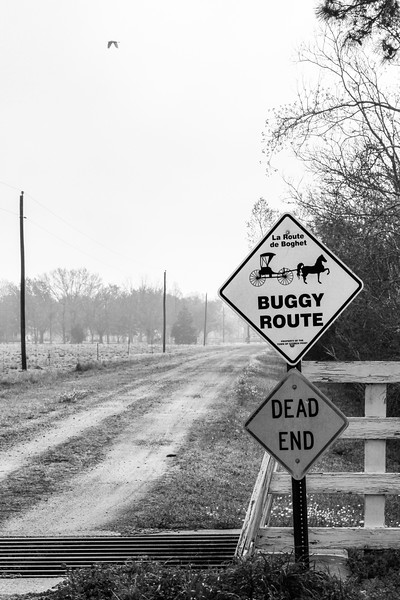 Buggy Route