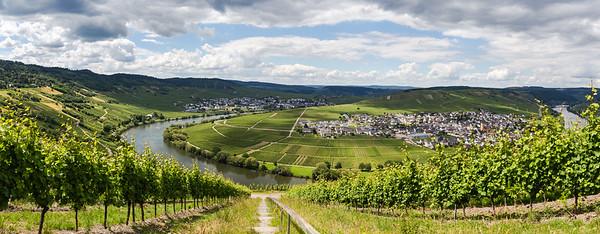 Blick auf Trittenheim an der Mosel 2020