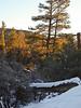 Sunrise colors on Van Dusen Canyon trail