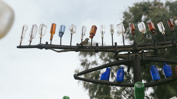 Elmer's Bottle Tree Ranch on Route 66 (Oro Grande, CA)