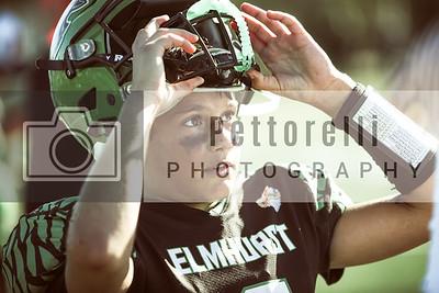 Elmhurst Eagles Football