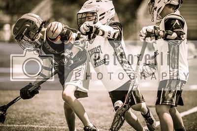 Elmhurst Lacrosse 2016