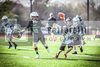 Elmhurst Lacrosse