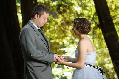 0014-d3_Katrina_and_Barry_Henry_Cowell_Redwoods_Felton_Wedding_Photography