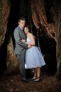 0047-d3_Katrina_and_Barry_Henry_Cowell_Redwoods_Felton_Wedding_Photography