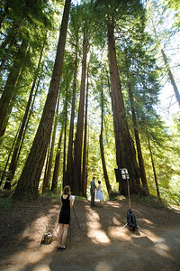 9592-d700_Katrina_and_Barry_Henry_Cowell_Redwoods_Felton_Wedding_Photography