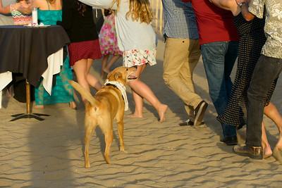 7777_d800b_Larry_and_Heidi_Twin_Lakes_Beach_Santa_Cruz_Wedding_Photography