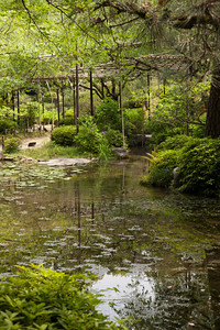 The gardens at Heian Shrine.