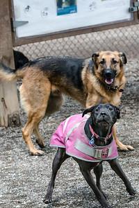 Beau & Elsie