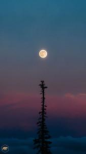 Full-Moon-Sunset