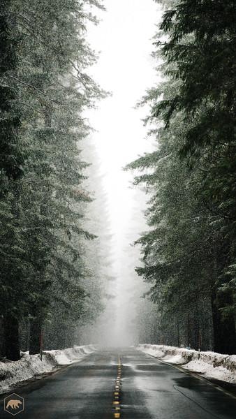 Snowy-Hwy-1