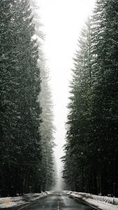 Snowy-Hwy-2