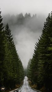 Oregon-Road