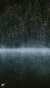 Todd-Lake-Trees