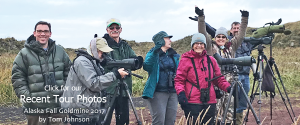 Field Guides Birding Tours Alaska group