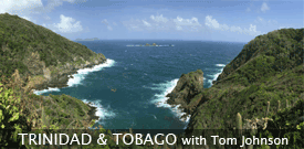 Trinidad & Tobago birding tour with FIELD GUIDES