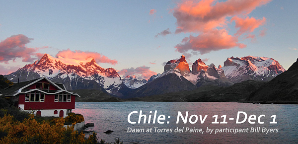Chile with FIELD GUIDES BIRDING TOURS