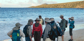 Galapagos with FIELD GUIDES BIRDING TOURS