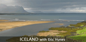 Iceland birding tour with FIELD GUIDES