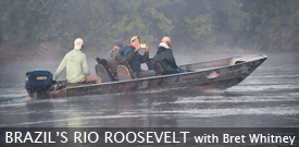 Brazil's Rio Roosevelt tour with FIELD GUIDES
