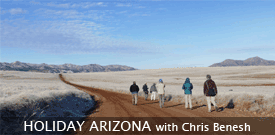 Field Guides Birding Tour to ARIZONA