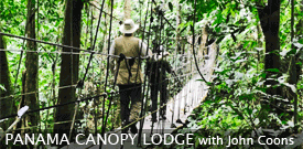 Field Guides Birding Tour to PANAMA'S CANOPY LODGE