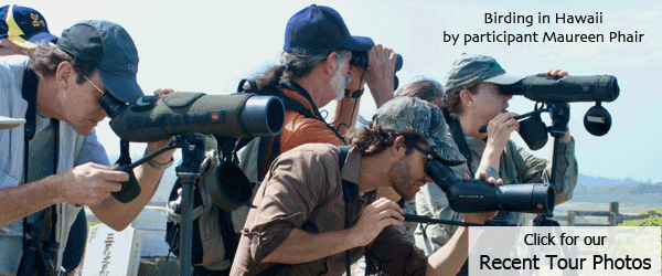 FIELD GUIDES BIRDING TOURS