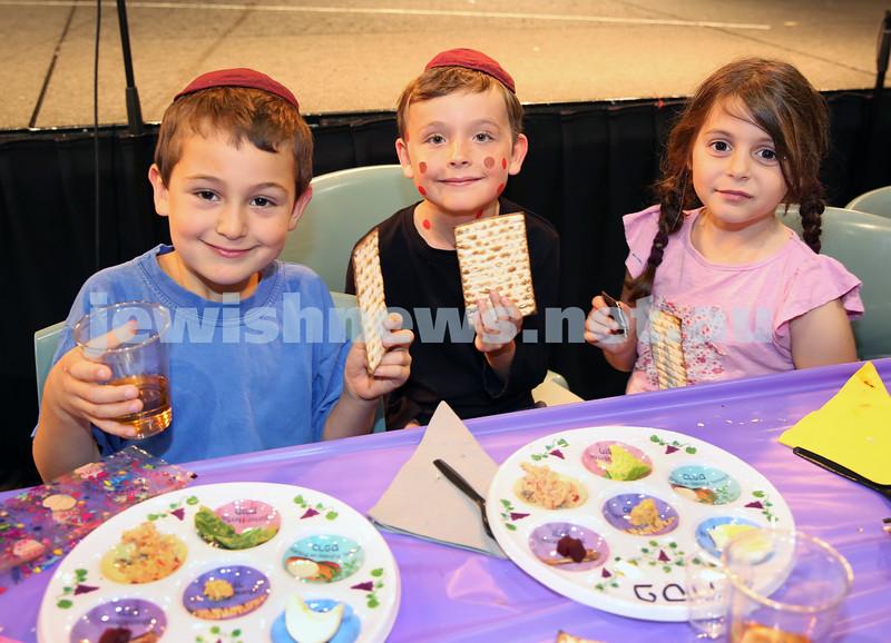 Emanuel infants demo Seder. Noah Vexler, Declan Christie, Madi Narunsky.