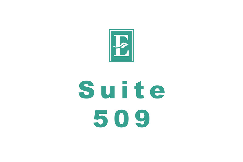 Embassy Suites Template 509
