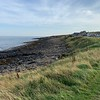 Craster harbour, Northumberland