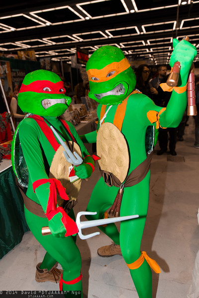 Raphael and Michelangelo