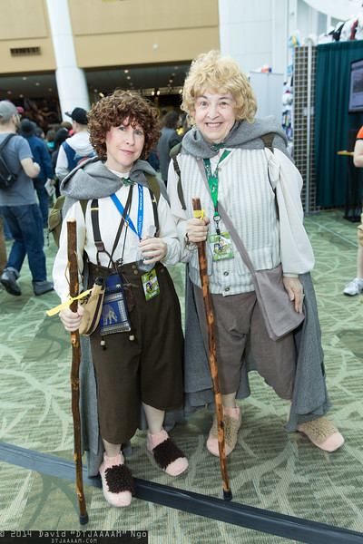 Frodo Baggins and Samwise Gamgee