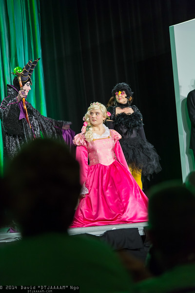 Maleficent, Princess Aurora, and Diablo