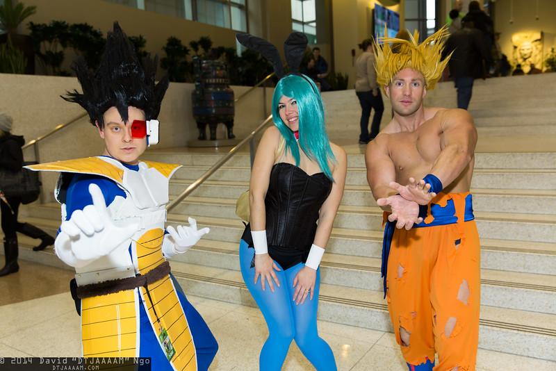 Vegeta, Bulma, and Goku