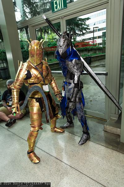 Knight Lautrec of Carim and Knight Artorias