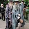 Albus Dumbledore and Gandalf the Grey