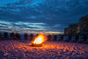 Beach Bonfire, Miramar Beach, FL