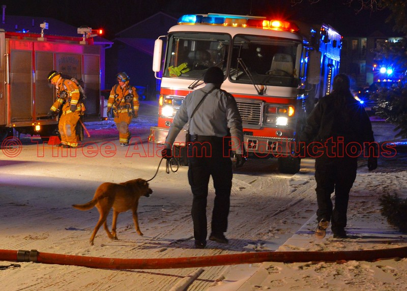 Colorado Springs Police Officers handle the dog that was rescued from a house fire on Colony Hills Circle. December 30, 2014