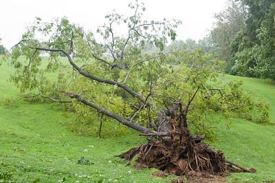 Hurricane Irene August 2011