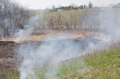 Brush Fires