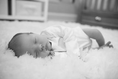 Emerson's Newborn Shoot