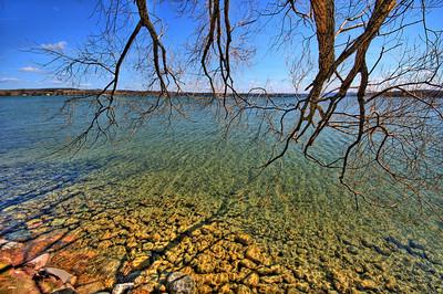 AE02 Branches - Canandaigua Lake, NY. Copyright © 2008 Alex Emes