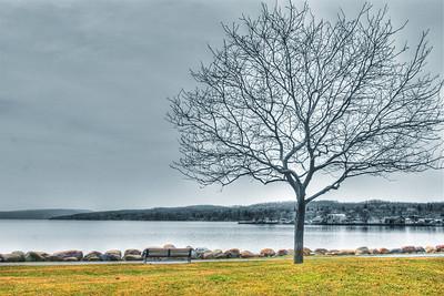 AE08d Springtime at the lake. Canandaigua Lake, NY. Copyright © 2010 Alex Emes