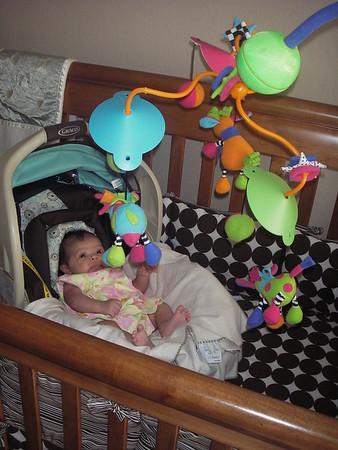 Emily 8 Weeks Old